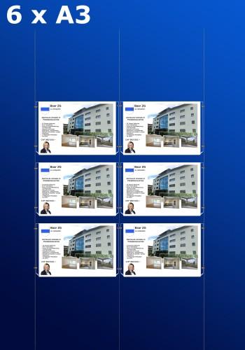 Fensterdisplays 6 x A3 - D