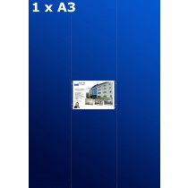 Fensterdisplays 1 x A3