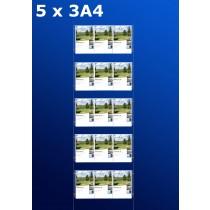 Fensterdisplays 5 x 3A4